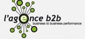 logo-agence-B2B
