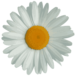 logo-big-flower-twitter-square