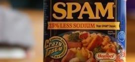 spam-less-sodium