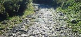 Ambrussum_Paved_Road_0406