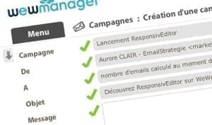 wewmanager-emailstrategie